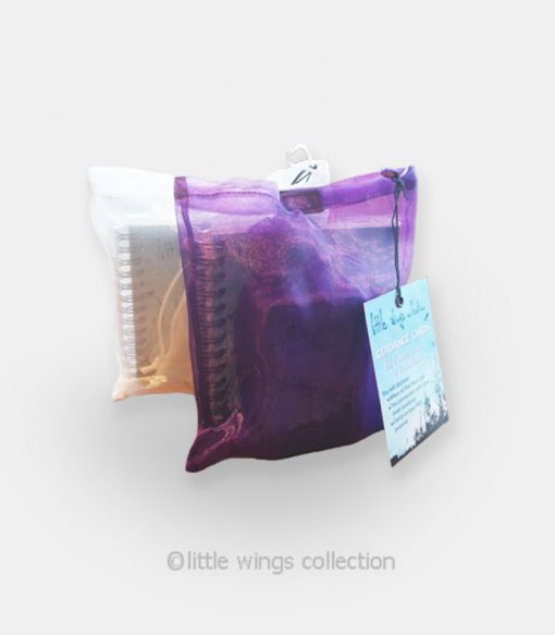 Guidance Oracle Cards - Little Wings Collection