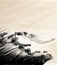 sonja kallio – catching wind