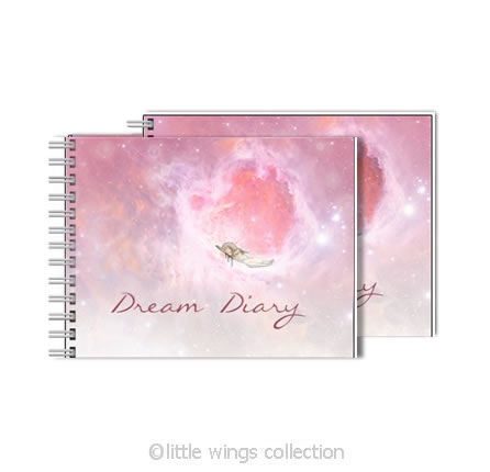 mini dream diary little wings collection